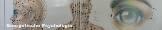 Energetische Psychologie Klopftherapie Meridiane